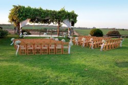 How to Host an Eco-Friendly Wedding